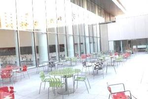 食堂の窓の外はオープンテラス風の中庭になっている